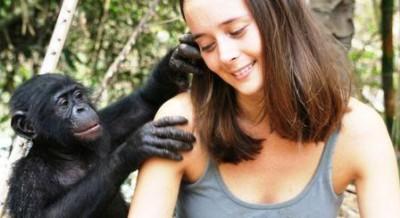 Bonobo_Handshake_-_1276187599612-448x244