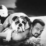 Happy B'Day Animal And Wildlife Advocate Leo DiCaprio!