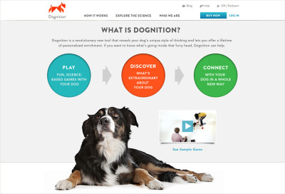 dognition-09_905