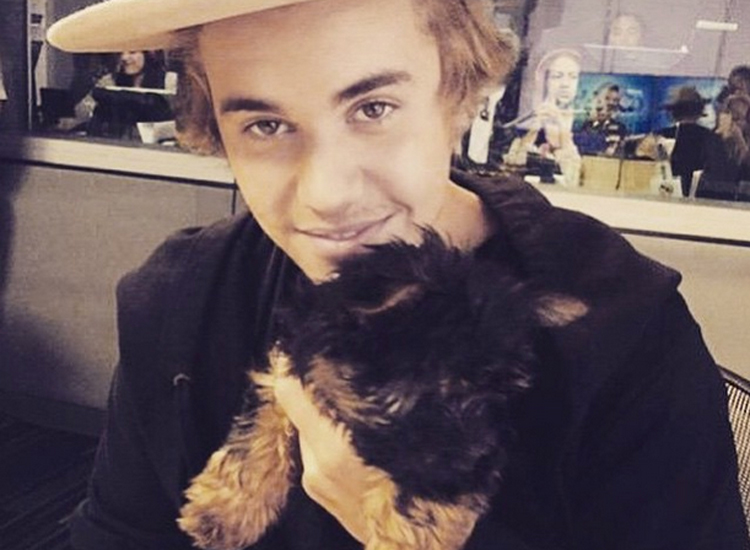 Justin Bieber In Puppy Love With Esther - Animal Fair