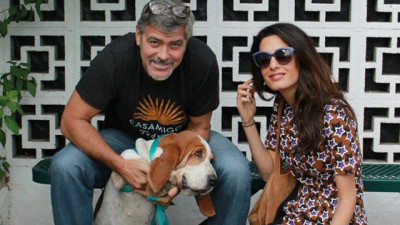 George_Clooney_Amal_Clooney_Millie_Puppy