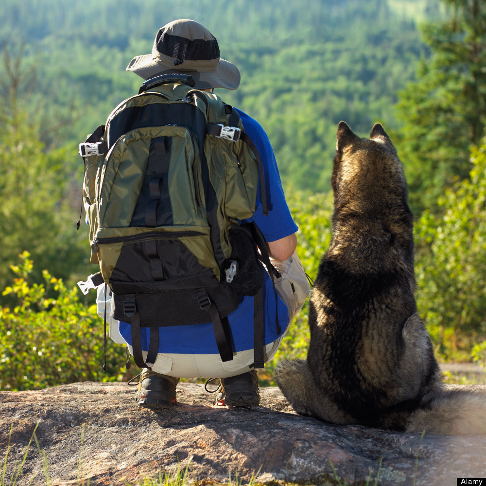 foto How to Hike with Your Hound