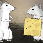 NYC's Rats, Bugs, Strays, And Pigeons Get Their Own Show – HBO's Animals!
