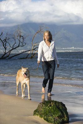Caucasian woman walking brown dog on leash on Maui, Hawaii beach.