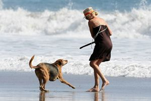 Charlize theron plays with her dogs in malibu on the beach oct 26