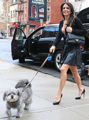 Bethenny and Cookie walking in NYC