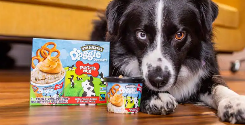 Ben & Jerry's, Doggie Desserts, Black and White dog, cute dog, peanut butter